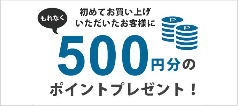 初めてお買い上げいただいたお客様にもれなく500円分のポイントプレゼント!